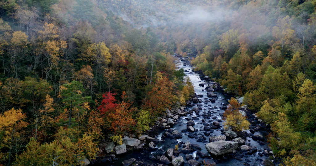 Go EVerywhere - Best Electric Scenic Drives to See Fall Foliage