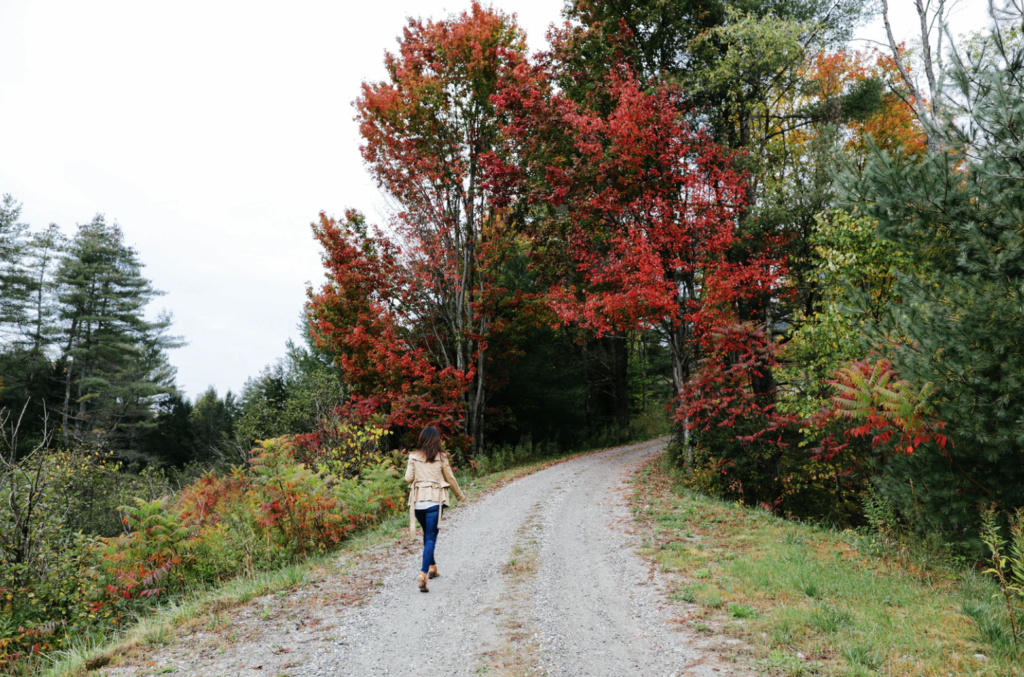 Go EVerywhere - Best Electric Scenic Drives to See Fall Foliage - Vermont