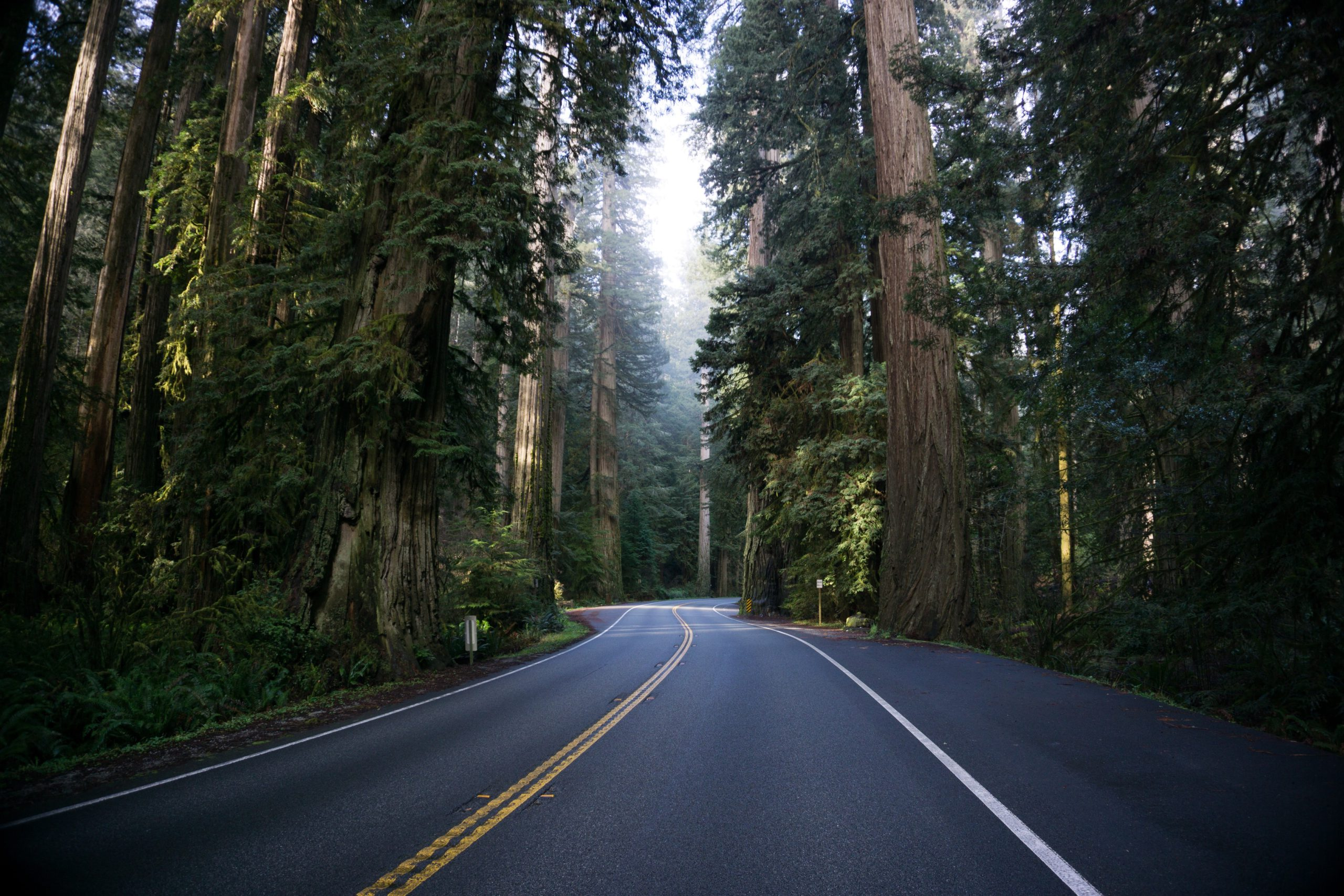 Looking for adventure? Drive further into the wilderness with these 5 EV tips